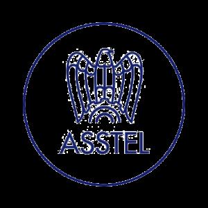 sma-logo-asstel-partner